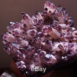 WOW! 2035g GEM Natural Amethyst Citrine Quartz Crystal Cluster