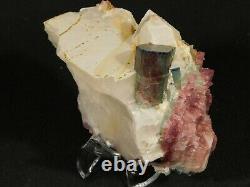 Watermelon Tourmaline Crystal Cluster with Lepidolite! On Quartz Brazil 756gr