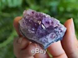 1.5-2.0 Grappe D'améthyste Améthyste Cristal Quartz Cluster Améthyste Géode Druzy
