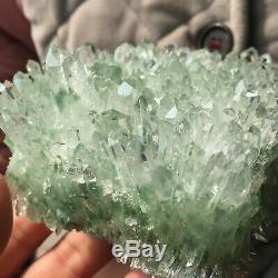 1,5 Lb Nouvelle Trouvaille Verte Fantôme De Cristal De Quartz Fantôme De Guérison Minérale 310