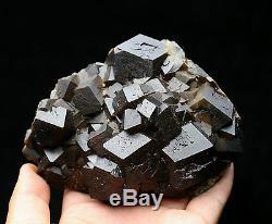 1007g Natural Andradite Garnet Crystal Cluster Quartz Inner Mongolia / Chine