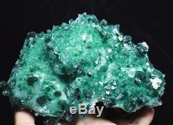 1038g Nouveau Trouver Beau Spécimen Vert Tibetan Phantom Quartz Cristal Cluster Spécimen