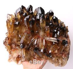 11.73lb Naturel Clair Smoky Citrine Quartz Point Cristal Cluster Healing Mineral