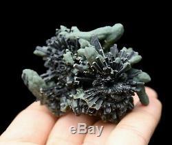 115g Rare! Beauté Cristal Vert Cluster & Ilvaite Minéraux Échantillons / Chine