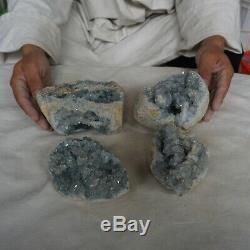 12.44lb 4pcs Naturel Bleu Bébé Célestite Quartz Geode Cluster Brésil