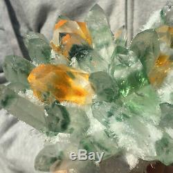 1275g Énorme Vert Clair Phantom Cristal De Quartz Grappe De Guérison Minérale Des Échantillons