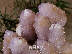 12cm Esprit Quartz Cristal Cluster Citrine Améthyste Druzy Cactus Pierre 28387