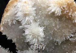 13,72 Lb Nouvelle Trouvaille Spécimen En Grappes De Cristal De Chrysanthème Blanc Naturel