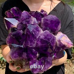 15.62lb Naturel Amethyst De Cristal De Quartz Groupe Géode De Guérison