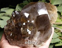 1510g Rare Naturel Clair Or Rutilé Quartz Spécimen De Grappe De Cristal
