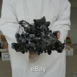 17.03lb 13,7 Naturel Foncé Smokey Noir Citrine Quartz Crystal Points Cluster