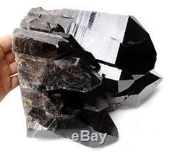 17,6lb Natural Rare Beautiful Black Quartz Crystal Cluster Mineral Specimen