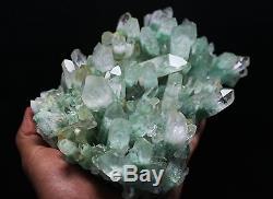 1720g Aaa Clair Naturel Vert Ghost Pyramide Quartz Cristal Cluster Spécimen