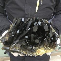 18.0lb 6.5 Naturel Beau Noir Quartz Cristal Cluster Spécimen Tibétain Ek28