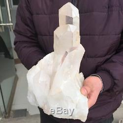 18 Lb 10,9 Dessus! Spécimen De Groupe De Quartz De Cristal De Roche Naturel Guérissant Eb24