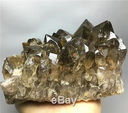 2.13lb Nouvelle Trouvaille Natural Clear Gold Spécimen De Grappe De Cristal Quartz Rutile