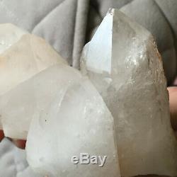 2.1lb Grand Naturel Blanc Clair Quartz Cluster Brut Des Échantillons De Guérison