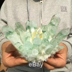 2.2lb Énorme Vert Clair Phantom Cristal De Quartz Grappe De Guérison Minérale Des Échantillons