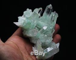 206.5g Rare Nature Vert Pyramide Ghost Quartz Cristal Cluster Spécimen