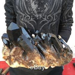 21.7lb 8.3 Spécimen De Grappe De Cristal De Quartz Noir Naturel Magnifique Db72