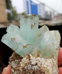216 Grams Incroyable Superbe Belle Aigue-marine Crystal Bunch Sur La Matrice @ Pak