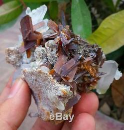 225-monde-rare-brookite-minéral-d. Specimen-cluster-combine-quartz-de-pk
