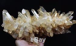 2850g Nouveau Trouver Clair Naturel Rose Quartz Crystal Cluster Original Specimen