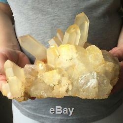 3.7lb Grand Clair Naturel Quartz Cristal Jaune Cluster Rugueux Guérison Des Échantillons