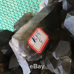 30.51lb Spécimen En Grappes De Quartz Fumées Naturel Cicatrisant S5671