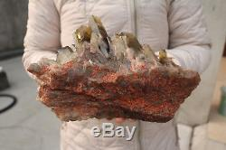 3100g Naturel Belle Citrine Smoke Quartz Crystal Cluster Spécimen Tibétain