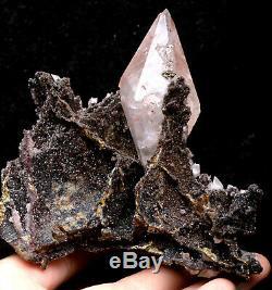 313g Naturel Calcite Évoluez Avec Chalcopyrite Cristal Cluster Spécimen / Hubei
