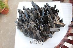 33.7kg 74.2lbs Naturel Beau Noir Quartz Spécimen De Groupe De Cristal
