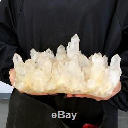 3700g Grand Nature Naturel Cristal Quartz Point De Grappe Spécimen Reiki Guérison D17