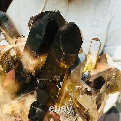 3900g Grand Naturel Noir Fumé Quartz Cristal Cluster Rough Healing Spécimen
