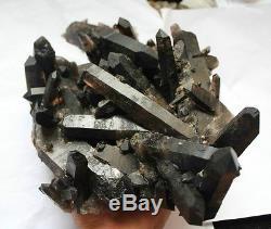 3980g Aaa +++ Rare Beau Spécimen Tibétain En Grappe De Quartz Quartz Noir