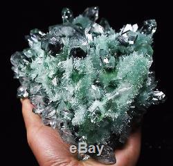 4.01lb Nouvelle Guérison De Spécimen Minéral De Grappe De Cristal De Quartz Fantôme Vert