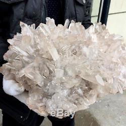 43 Lb 17 Magnifique Spécimen De Grappe De Quartz De Cristal De Roche Dr7