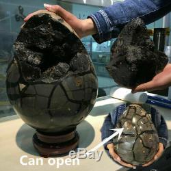 45.98lb Naturel Dragon Septarian Geode Quartz Cluster Guérison D'œufs En Cristal