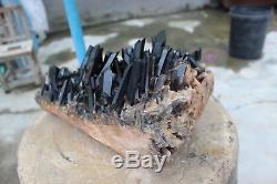 5.3kg Beau Spécimen Tibétain De Grappe De Cristal De Quartz Noir Naturel