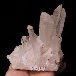 5.80lb Spécimen Minéral De Guérison De Grappe De Cristal De Point Blanc Naturel Clair De Quartz