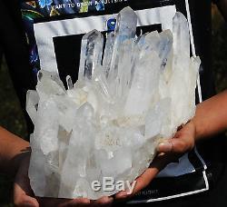 5052g Naturel Clair Lémurien Graine Quartz Point Cristal Cluster Spécimen
