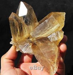 523.4g Nouveauté Trouver Naturel Clair Or Rutilated Quartz Crystal Cluster Specimen