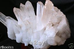 5584g Spécimen De Grappe De Cristal Point De Graine De Lémurien Clair Naturel