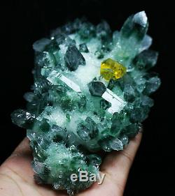 584g Nouveauté Trouver Un Spécimen De Grappes De Cristal De Quartz Fantôme Tibétain Vert Magnifique