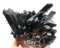 6.12lb Rare Naturel Noir Cristal Quartz Cluster Minéral Spécimen
