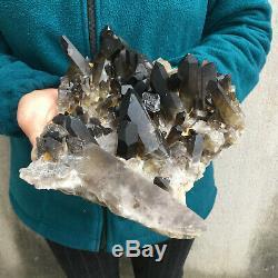 6.1lb Naturel Grand Quartz Fumé Grappe De Guérison Cristal Mineral Point Échantillon