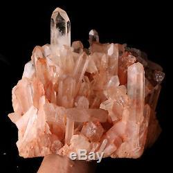 6.4lb Natural Clear Skin Quartz Point De Cristal Cluster Guérison Spécimen Minéral