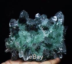 722g Nouveau Trouver Beau Spécimen Vert Tibetan Phantom Quartz Cristal Cluster Spécimen