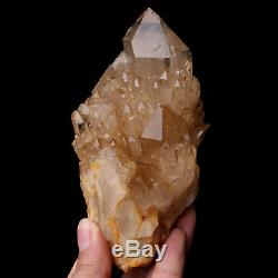 740g Naturel Cloche Smoky Citrine Quartz Cristal Cluster Guérison Du Congo
