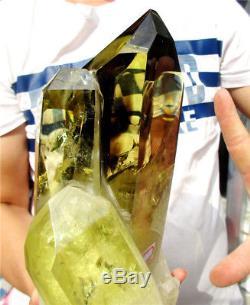 8.39lb Naturel Fumé Citrine Quartz Cluster Cristal Baguette Point Spécimen 134.3oz